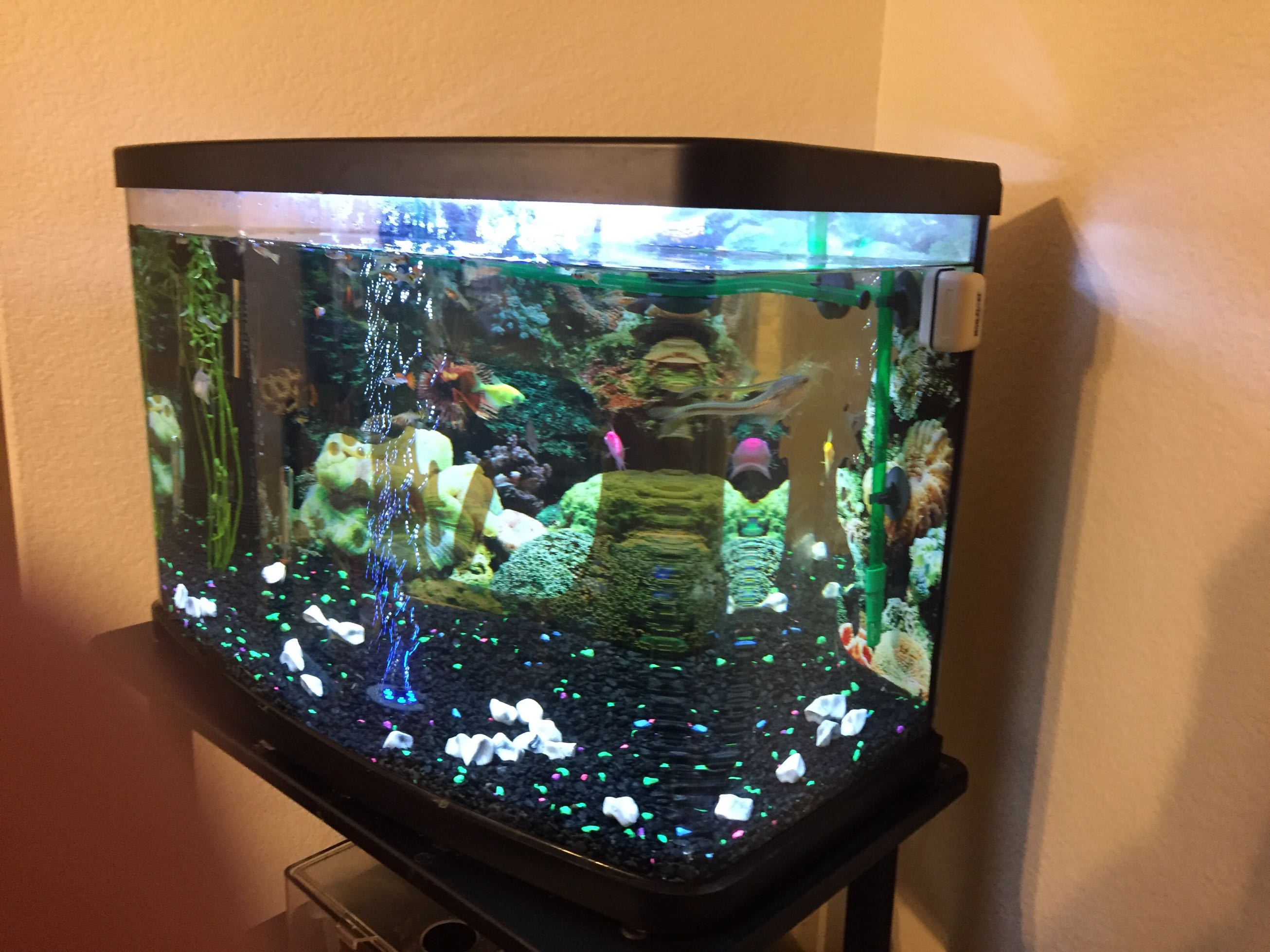 23 gallon nat geo aquarium for sale in mckinney tx for National geographic fish tank filter